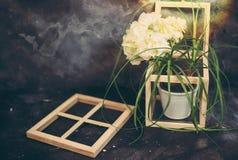 Uitstekend huisdecor houseplants en oude hout en glasdoos en kaders, comfortabele binnenlandse toebehoren stock afbeelding