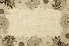 Uitstekend kader met retro de mengelingsgerbera van de bloemencollage, chrysant, dahlia, primula, decoratieve zonnebloem en oude  royalty-vrije stock fotografie