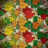 Uitstekend naadloos patroon van gekleurde esdoorn Stock Fotografie