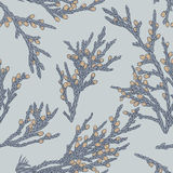 Uitstekend patroon met jeneverbessen Stock Foto