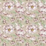 Uitstekend patroon met pioen Stock Afbeeldingen