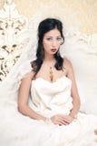 Uitstekend portret van een mooi brunette royalty-vrije stock foto