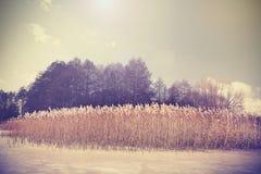 Uitstekend retro gestemd beeld van meer in de winter Stock Fotografie