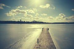 Uitstekend retro gestemd beeld van meer in de winter Stock Foto