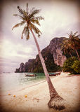 Uitstekend retro gestileerd tropisch strand met palmen royalty-vrije stock fotografie