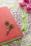 Uitstekend sleutels en boek Royalty-vrije Stock Afbeelding