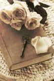 Uitstekend sleutels en boek Royalty-vrije Stock Afbeeldingen