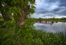 Uitstekend slot op rivier Shannon Stock Foto's