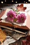 Uitstekend stijlstilleven met geopende boek en bloemen stock foto