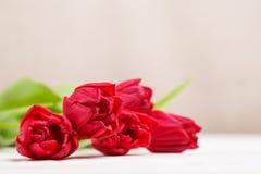 Uitstekend stilleven met een de lenteboeket van tulpen Het concept moeder\ 's Dag, de dag van vrouwen Verfraai huis met bloemen royalty-vrije stock afbeeldingen