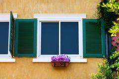 Uitstekend venster Royalty-vrije Stock Afbeeldingen