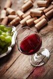 Uitstekend wijnstilleven Stock Fotografie