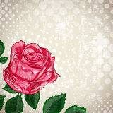Uitstekende Abstracte Rose Flower Background Stock Fotografie