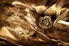 Uitstekende achtergrond: Droog nam op satijn toe Het gouden gekleurde beeld, zal stock foto's