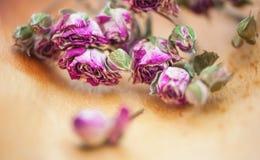 Uitstekende achtergrond met droge theerozen stock fotografie