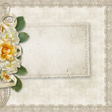 uitstekende achtergrond met een kaart en rozen Stock Foto