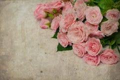 Uitstekende achtergrond met rozen royalty-vrije stock foto