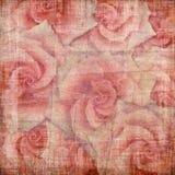 Uitstekende achtergrond met rozen Stock Foto