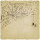 Uitstekende achtergrond met spinneweb royalty-vrije illustratie