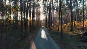 Uitstekende autoritten in bos in zonlicht stock footage