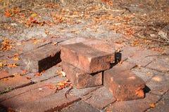 Uitstekende baksteen roa in daling Royalty-vrije Stock Fotografie