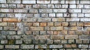 Uitstekende bakstenen muurtextuur Stock Fotografie