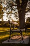 Uitstekende bank in het park bij zonsondergang Royalty-vrije Stock Afbeelding