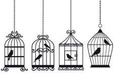 Uitstekende birdcages met vogels Stock Afbeeldingen