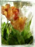 Uitstekende bloem stock illustratie