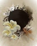 Uitstekende bloem geïnspireerdee lay-out Stock Fotografie