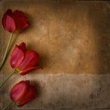 Uitstekende bloemachtergrond Royalty-vrije Stock Foto's