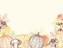 Uitstekende bloemen de herfstachtergrond met pompoenen stock illustratie