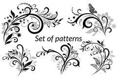 Uitstekende Bloemen Kalligrafische Patronen Stock Afbeeldingen