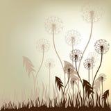 Uitstekende Bloemen VectorAchtergrond Royalty-vrije Stock Foto's