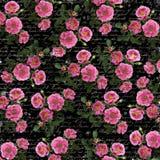 Uitstekende bloemenachtergrond Stock Fotografie