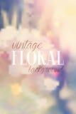Uitstekende bloemenachtergrond Royalty-vrije Stock Foto's