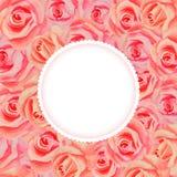 Uitstekende bloemenachtergrond Botanische illustratie voor uw uitnodiging en gelukwensen royalty-vrije illustratie