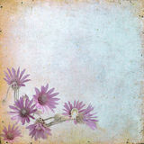 Uitstekende bloemenachtergrond met gras en bloemen op een bruine rug Stock Afbeeldingen