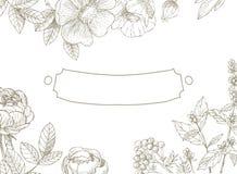 Uitstekende bloemenachtergrond met kader Royalty-vrije Stock Afbeeldingen