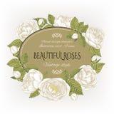 Uitstekende bloemenkaart met een kader van witte rozen Stock Afbeeldingen