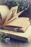 Uitstekende boeken en de zomer blauwe bloemen Stock Fotografie
