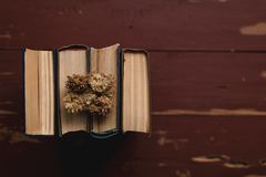 Uitstekende boekenstapel op oude houten oppervlakte in warm directioneel licht stock afbeeldingen