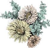 Uitstekende botanische de tuinbloemen van de illustratiebloesem Colorfull Stock Foto's
