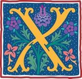 Uitstekende brief X in kleur Stock Foto