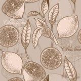Uitstekende citroen naadloze achtergrond Stock Foto