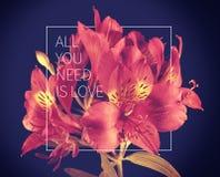 Uitstekende de bloemachtergrond van het liefdecitaat Royalty-vrije Stock Fotografie