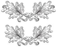 Uitstekende Eiken kronen vector illustratie
