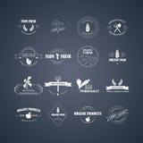 uitstekende etiketten met kartontextuur Royalty-vrije Stock Afbeelding