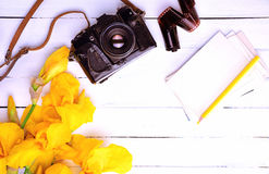 Uitstekende filmcamera in een leergeval, Royalty-vrije Stock Foto's
