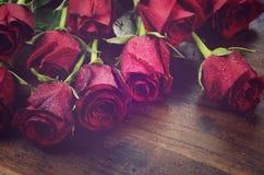 Uitstekende filter rode rozen Royalty-vrije Stock Afbeelding